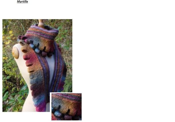 Echape Myrtille